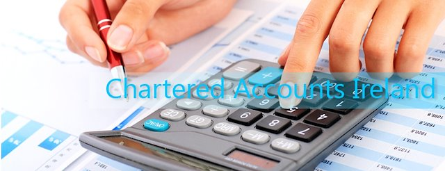 Importance of chartered accountant